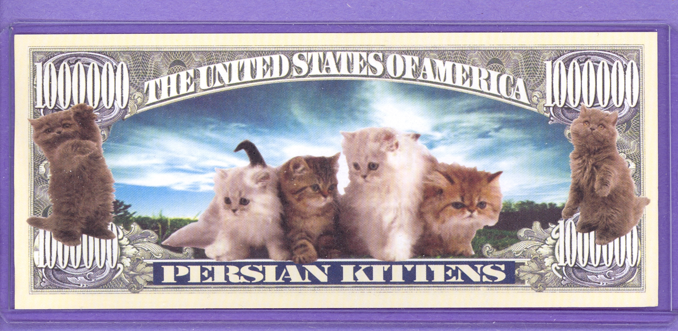 Persian Kittens $1,000,000 Novelty Note