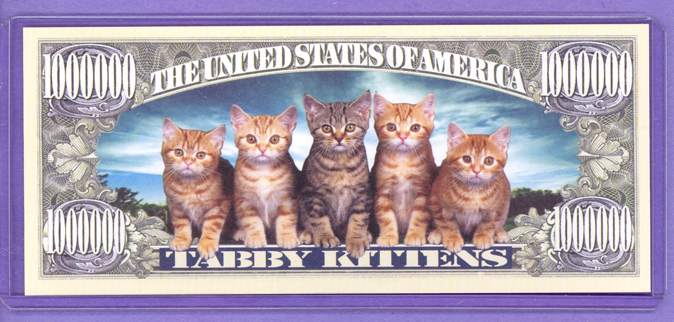 Tabby Kittens $1,000,000 Novelty Note
